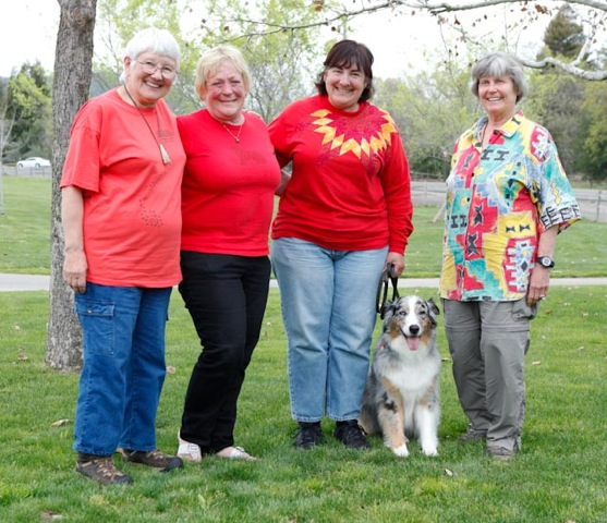 Napa Valley Dog Training Club